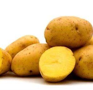 potato-yukon